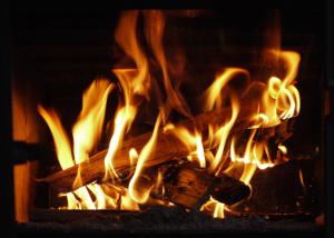 Af modish Hvad brænder bedst i brændeovn? – find svaret herunder IV03